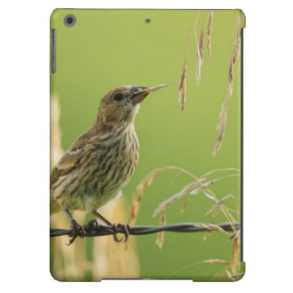 Finch eating seeds of a wild grass iPad air cover