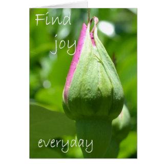 Find Joy Everyday Greeting Card