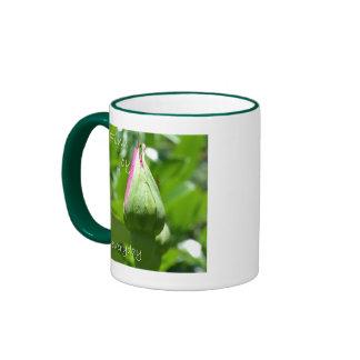 Find Joy Everyday Ringer Mug
