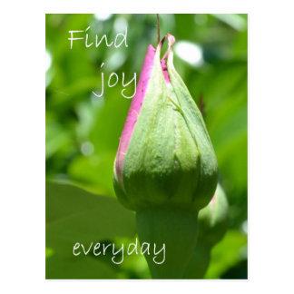 Find Joy Everyday Post Card