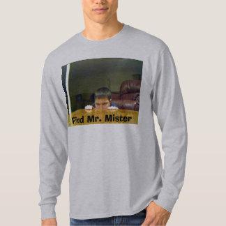 Find Mr. Mister T-Shirt