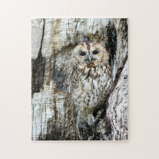 Find The Owl Jigsaw Puzzle