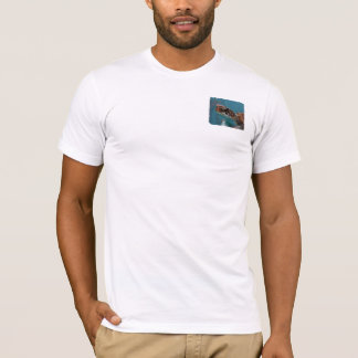 Find Your Reef Men Sea Turtle T shirt