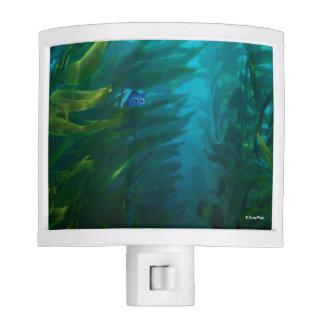 Finding Dory | Hide and Seek - Sea Kelp Nite Light