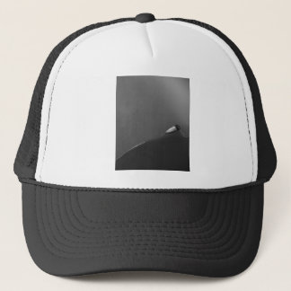 Fine art airplane wing on a ball cap
