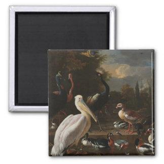 Fine art birds magnet