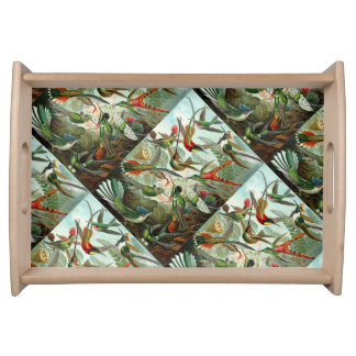 Fine Art Hummingbirds - Art Forms of Nature Serving Tray