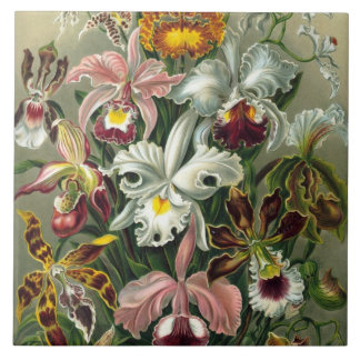 Fine Art Orchids - Art Forms of Nature Tile