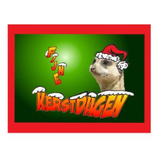 Fine Christmas days Stokstaarte green postcard