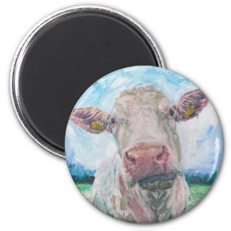 finisCow no 04. 0223 Irish Charolais Cow Magnet