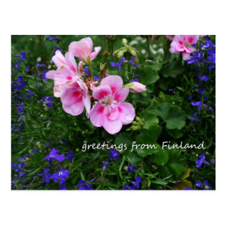 Finland in Flowers, 1st in a series Postcard