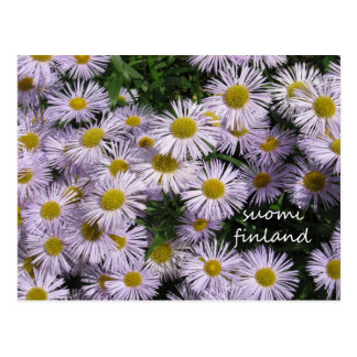 Finland in Flowers, 2nd in a series Postcard