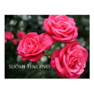 Finland in Flowers, 3rd in a series Postcard