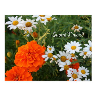 Finland in Flowers, 4th in a series Postcard