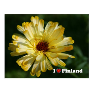 Finland in Flowers, 5th in a series Postcard