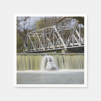 Finley Dam After The Rain Paper Napkin