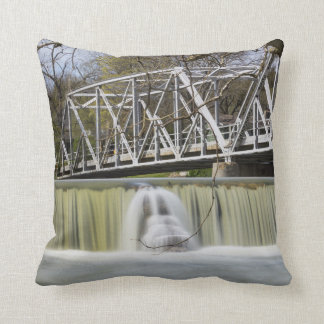 Finley Dam After The Rain Throw Pillow