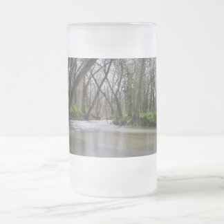 Finley Tranquility In Spring Time Frosted Glass Beer Mug