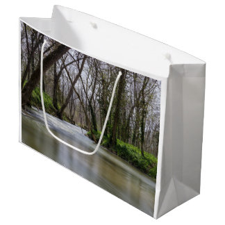 Finley Tranquility In Spring Time Large Gift Bag