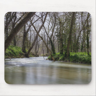 Finley Tranquility In Spring Time Mouse Pad