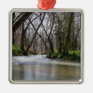 Finley Tranquility In Spring Time Silver-Colored Square Ornament