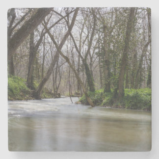 Finley Tranquility In Spring Time Stone Coaster