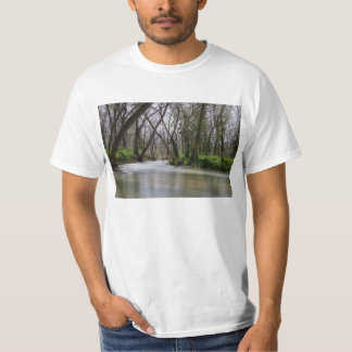 Finley Tranquility In Spring Time T-Shirt