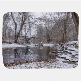 Finley Winter Snow Baby Blanket