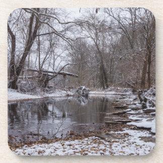 Finley Winter Snow Coaster