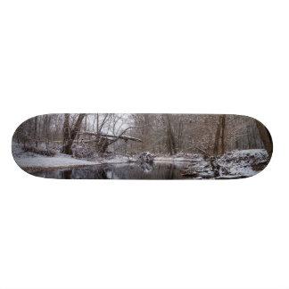 Finley Winter Snow Skate Board