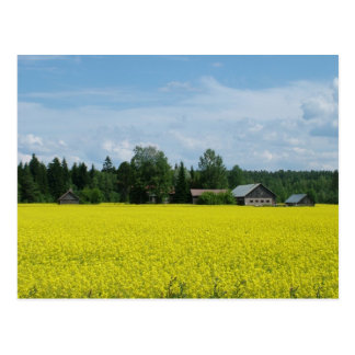Finnish Countryside postcard