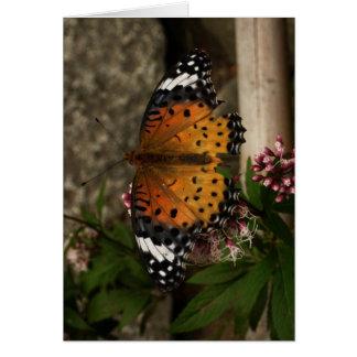 Finnish-Hyvää Syntymäpäivää-butterfly Card