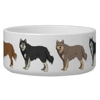 Finnish Lapphund colors dog bowl