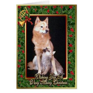 Finnish Spitz Dog Blank Christmas Card