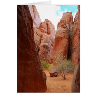 Fins, Arches National Park, Utah  Card