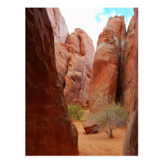 Fins, Arches National Park, Utah, Postcard
