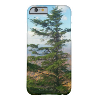 Fir tree Cell Phone and Ipad case