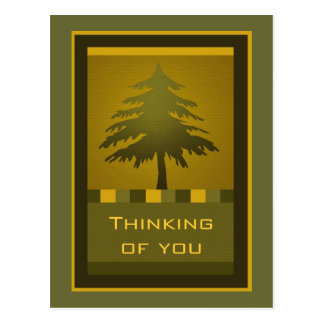 Fir Tree postcard