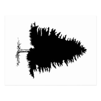 Fir Tree Postcard