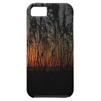 Fire at Dawn iPhone 5 Cases