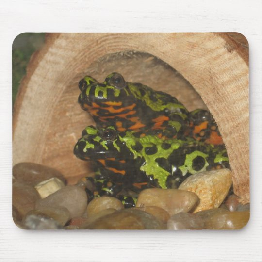 Fire Belly Toads Mouse Pad
