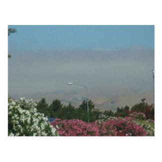 Fire Haze from fire near Chico CA 2008 Postcard