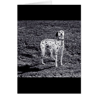Fire House Dalmatian Dog in Black and White Ink Note Card