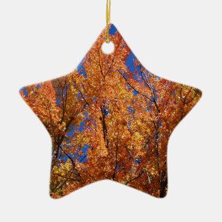 Fire Orange Tree Ceramic Star Ornament