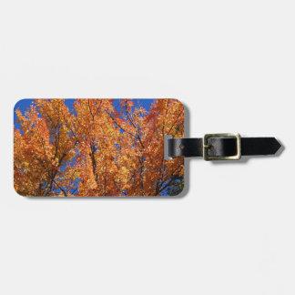 Fire Orange Tree Luggage Tag