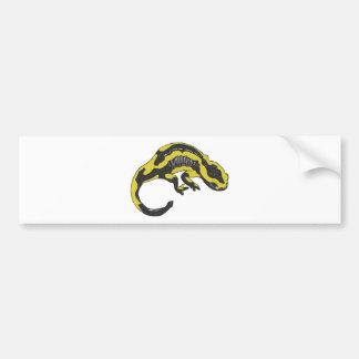 Fire Salamander Bumper Sticker