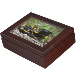 Fire Salamander Keepsake Boxes