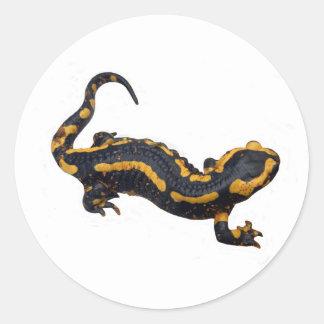 Fire Salamander Sticker