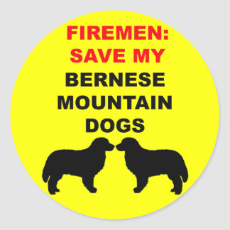 Fireman Save My Bernese Mountain Dogs Classic Round Sticker
