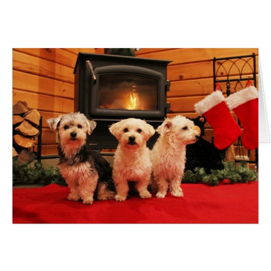 Fireside Pup Christmas Card